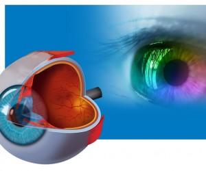 Презентации по офталмология
