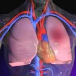 Емболия и тромбоза