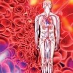 Холестерол LDL